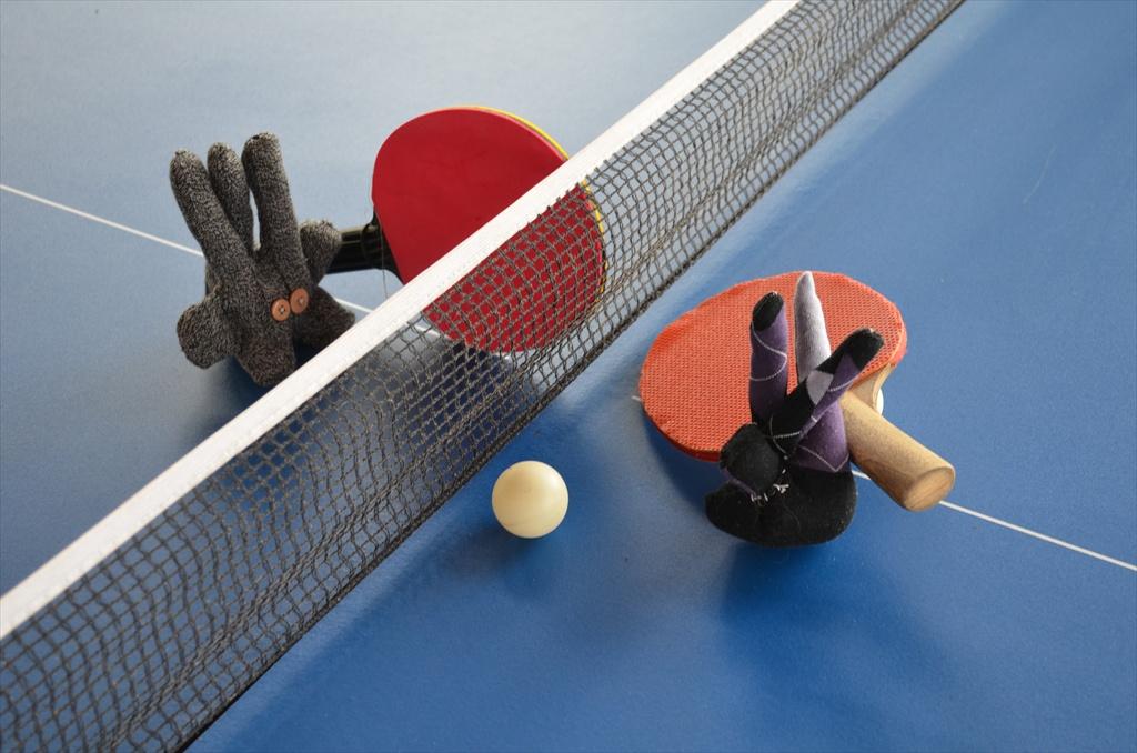 E&M Ping-Pong