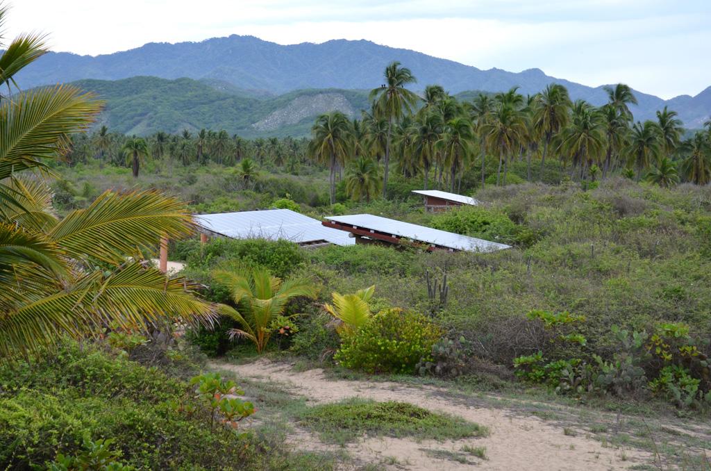 Playa Viva Solar Panels