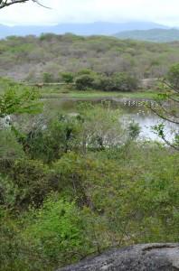 Playa Viva Lake